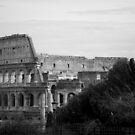 Colosseum, Rome by Laura Fell