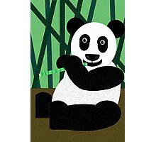 Panda Poster Photographic Print