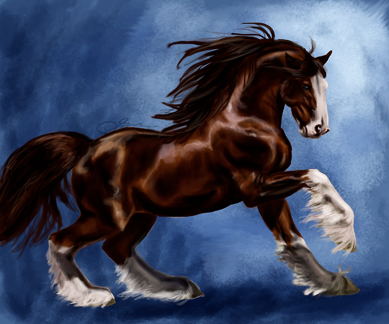 Clydesdale by MoparPhoenix