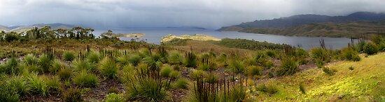 Lake Pedder by Jocelyn  Parry-Jones