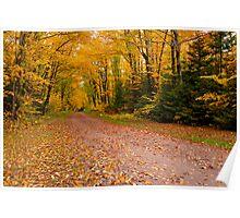 Yellow fall Driveway Poster
