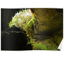 West Cave  Poster