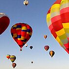Would You Like To Fly In My Beautiful Balloon? by Loree McComb