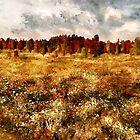 Prairie in a Dream by Erica Yanina Lujan