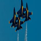 Blue Angels Diamond by Carolyn Hutchins