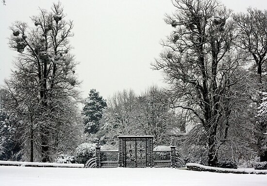 Iron Gate, Petworth Park. by Emma Turner