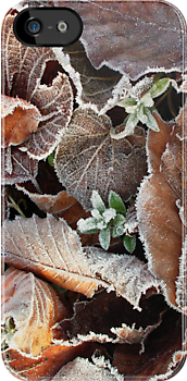 Frost on fallen leaves in early Spring for iPhone by Philip Mitchell