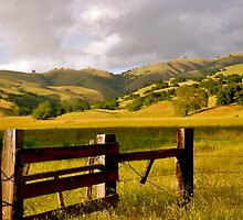 Carmel Valley California by Karen Dempsey