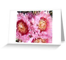 Cactus Blooms Pink Greeting Card