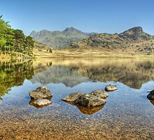 April At Blea Tarn by VoluntaryRanger
