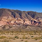 Painted Peaks, Los Cardones National Park, Argentina by strangelight