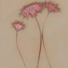 Lumen Print - Dandelions in pink and brown by jeliza