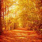 Golden Path by teresa731