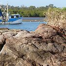 Cabbage Tree Creek by PhotosByG