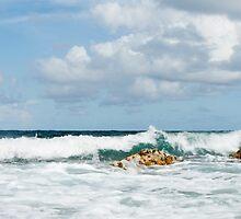 St. Thomas, US Virgin Islands by Roma Czulowska
