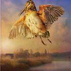 spring flight / american woodcock by R Christopher  Vest