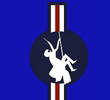 Ministry of Magic Air Force Insignia US by Paul Simms