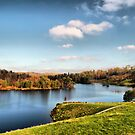 Tarn Hows . by Irene  Burdell