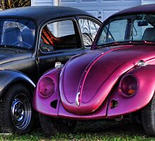 Bug Line by Michelle  Edwards Insights Photography