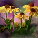 Black-eyed Susan Flower Blossoms by CrowningGlory