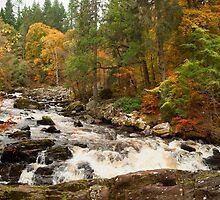 River Brann,Dunkeld,Perthshire,Scotland by M.S. Photography & Art