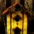 Rustic Birdhouse - We Are Moving by Sandra Foster