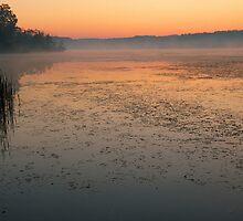 Stony at Dawn by Bill Spengler