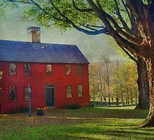 The Red House by Barbara Manis