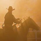 Cowboy sunset by kurrawinya