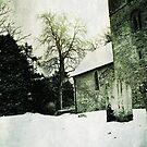 Albury Autumn Snow by Nicola Smith