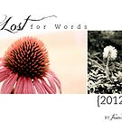 2012 Lost For Words Calendar by Franchesca Cox