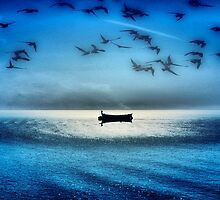 Birds At Sea... by paradox0076