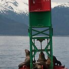 not just a bouy! Juneau Alaska by creativegenious