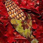 CORN AND THANKSGIVING by joancaronil