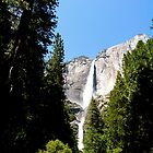 Yosemite by meganparker