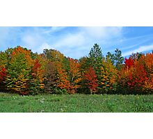 Colorbook Fall,Fifield Wisconsin U.S.A. Photographic Print