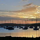 Valentine Bay NSW, at sunset by Robyn Selem