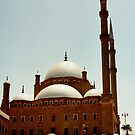 Mohammad Ali Mosque by machka