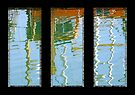 Reflections Triptych by buttonpresser
