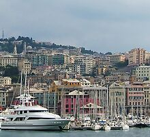 Genoa skyline II by Tom Gomez