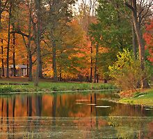 October Reflections 2 by mltrue