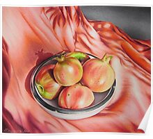 Still life in coral tones Poster