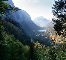 Portrait of an Alpine view by samwisewoahzay