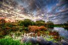Swampy by Yhun Suarez