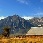 """Carson Valley Barn"" by Lynn Bawden"