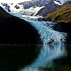Alaska College Fjord by Stephen  Saysell