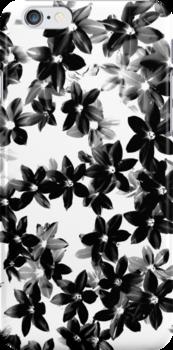 Starflowers by Kitsmumma