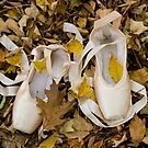 Pointes in Leaves by Lita Medinger