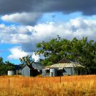 Home of Corrugated Iron - Country New South Wales by Marilyn Harris