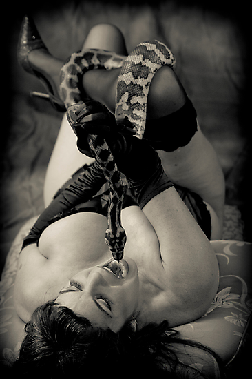 Twas the serpent who beguiled me... Vers 2 by Paul Louis Villani